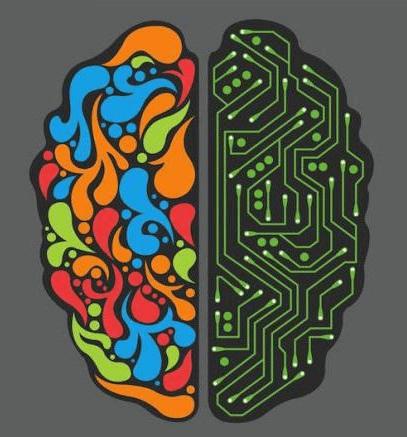 racionalizm i kreativ